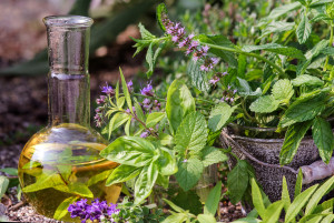 Gary Young Essential Oils